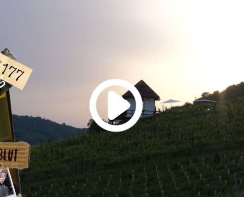 Den schönsten Sonnenuntergang erlebt man bei uns mitten im Rebberg. Mit einem Glas Schwarz Wein, wird der Abend zu einem unvergesslichen Erlebnis.