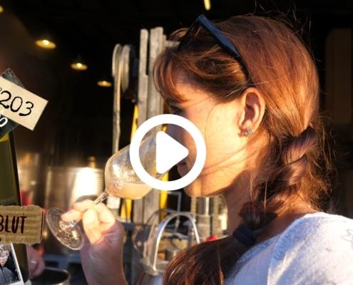 Jetzt fällt die Entscheidung, welche Weinhefe macht das Rennen. Es gibt so viele verschiedene Weinhefe pro Traube, und nicht jede ist geniessbar.